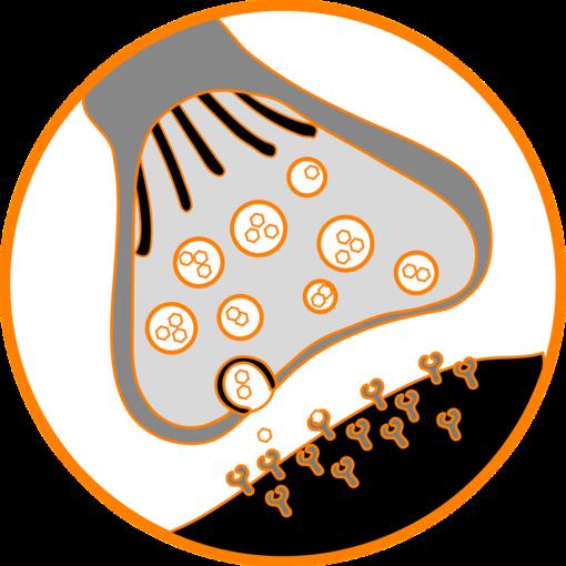 farmaci da non usare, controindicati o sconsigliati nella miastenia